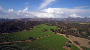 Zaca Msea's gorgeous environs