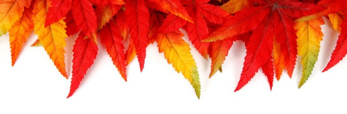 autumn-leaf-frame-11286977540bm6b